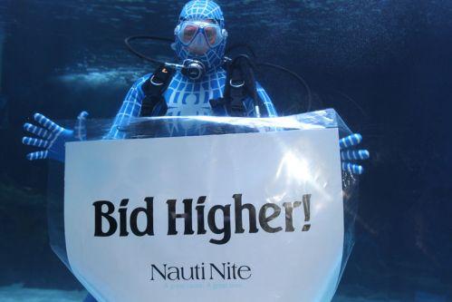 bid-higher